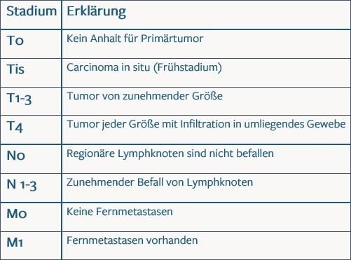 TNM Klassifikation
