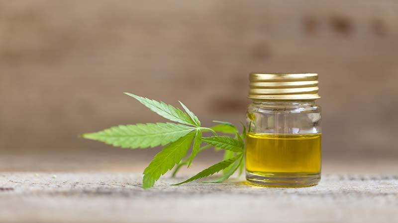 Therapie mit Cannabis – Was Sie darüber wissen sollten