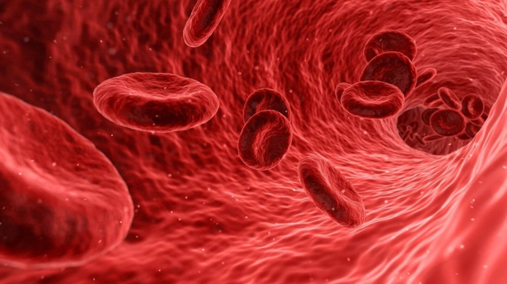 Corona: Ist die Blutgruppe ein Risikofaktor?
