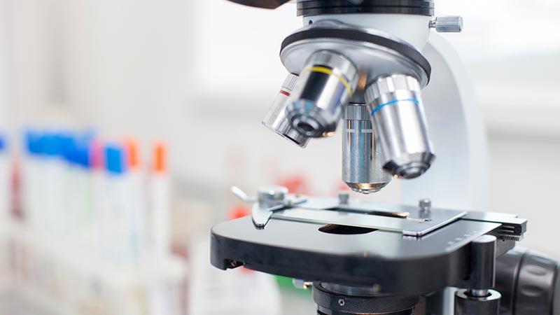 Wofür werden klinische Studien durchgeführt?